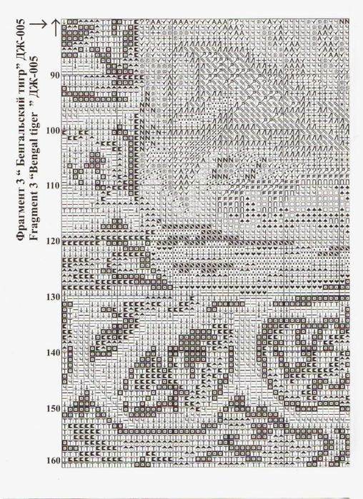 11 (508x700, 462Kb)