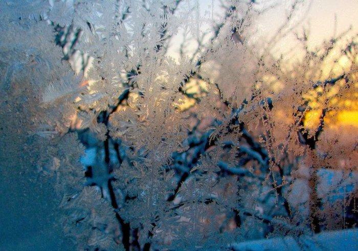 мороз на стекле фото 8 (700x490, 352Kb)