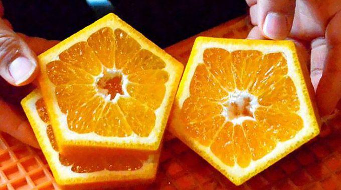 пятиугольные японские апельсины 2 (680x380, 280Kb)