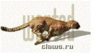3045391_Snimok_ekrana_20140124_v_9_14_37_AM (136x78, 21Kb)