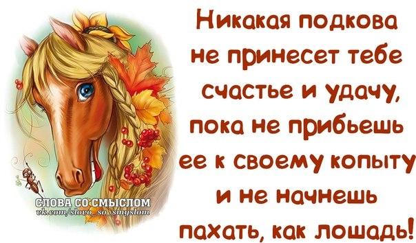 1390331530_frazochki-8 (604x354, 160Kb)