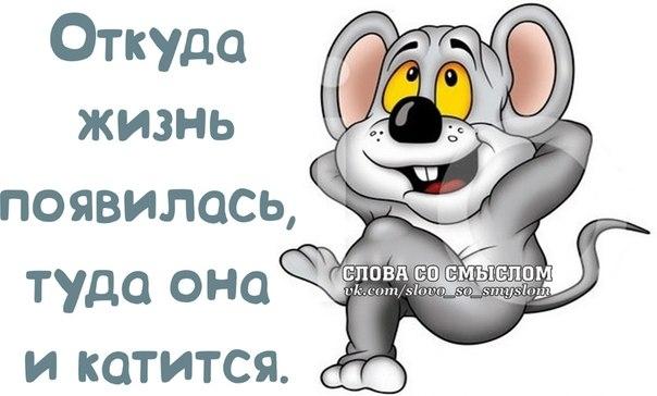 1390331569_frazochki-11 (604x364, 99Kb)