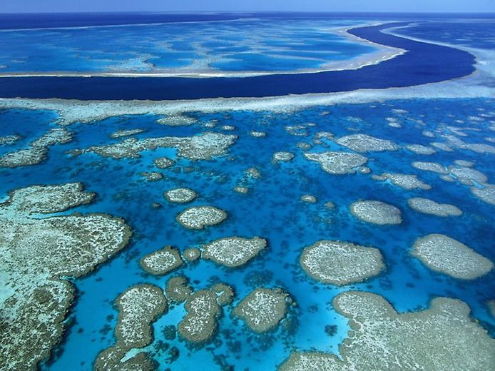 Great_Barrier_Reef_Marine_Park_Queensland_Australia (694x520, 75Kb)