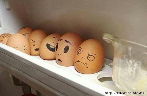 яйца (1) (502x327, 69Kb)