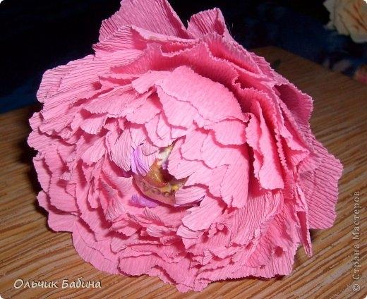 пион из конфет и гофробумаги (11) (520x424, 152Kb)