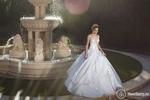 Превью свадьба47 (700x466, 228Kb)