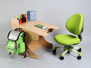 купить парту стол для школьника требования к партам столам рабочему месту детей/4682845_d12750035397de4f31cc6c718998e37f (300x225, 25Kb)