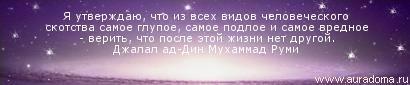 80 (410x85, 25Kb)