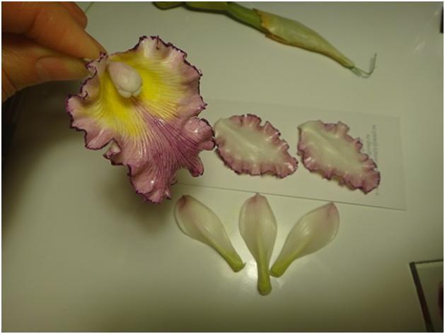 Орхидея своими руками из глины 74