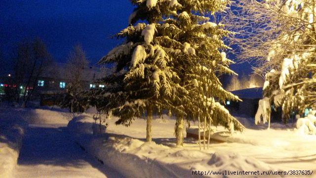 морозное утро (640x360, 155Kb)
