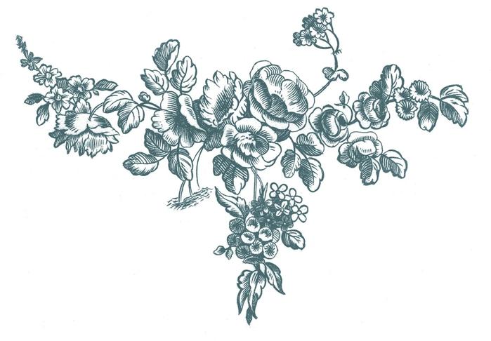 Винтажные изображения для творчества. Орнамент (6) (700x486, 138Kb)