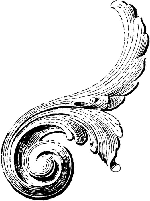 Винтажные изображения для творчества. Орнамент (29) (524x700, 135Kb)