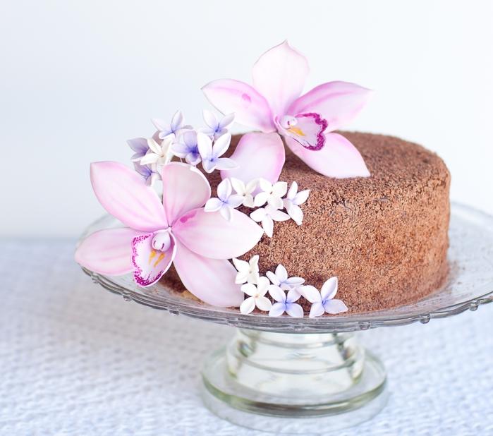 Орхидея из сахарной мастики для шоколадного торта с кокосовым кремом (8) (700x618, 239Kb)