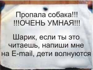 5079267_idXohJzVo0U_10_ (300x225, 13Kb)