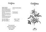Превью Enigma 01 (700x493, 99Kb)