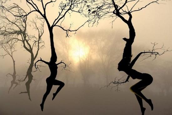 -creative-stuff-Other-fantasy-Fantasy-Art-nature-images-Good-Morning-Wendy_large (550x367, 53Kb)