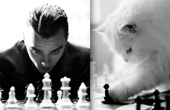 мужчины и кошки 14 (570x371, 76Kb)
