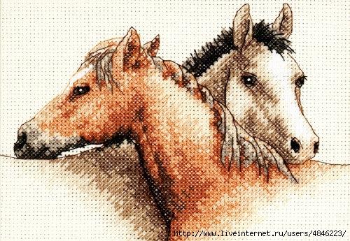 лошадки (500x345, 208Kb)