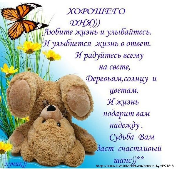 http://img0.liveinternet.ru/images/attach/c/10/109/77/109077406_large_o5W9xBk_59w.jpg