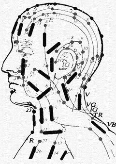 head_conductor (250x450, 20Kb)
