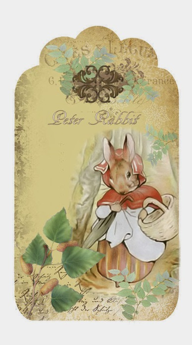 4964063_peter_rabbit_1 (388x700, 71Kb)
