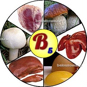 vitaminb5 (294x294, 42Kb)