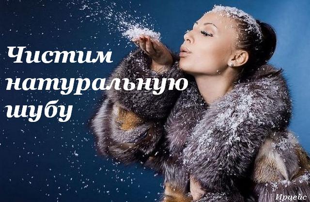 3720816_shyba (640x416, 110Kb)