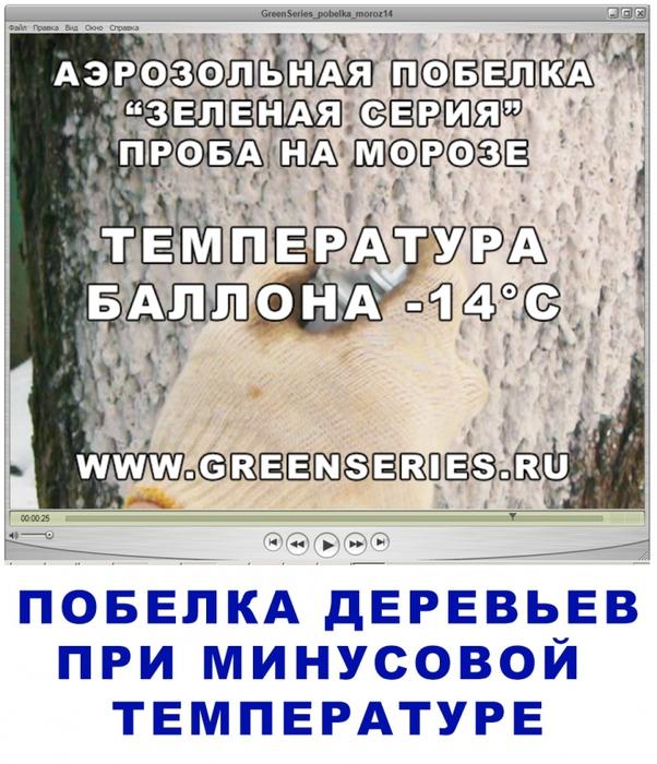 побелка весной, весенняя побелка, когда белить деревья, чем белить деревья, как побелить кусты, надо ли белить кусты, кто белил кусты, побелка зимой, побелка аэрозольная, зеленая серия побелка, аэрозоль побелка, защита от солнечных ожогов, как защитить деревья от мороза, защита от вредителей, /3041158_GreenSeries_pobelka_tuya000 (602x700, 312Kb)