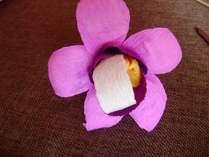 Орхидея из гофрированной бумаги. Мастер-класс (11) (700x525, 310Kb)
