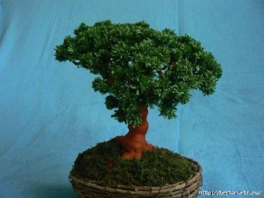 Дерево Бонсай из гофрированной бумаги