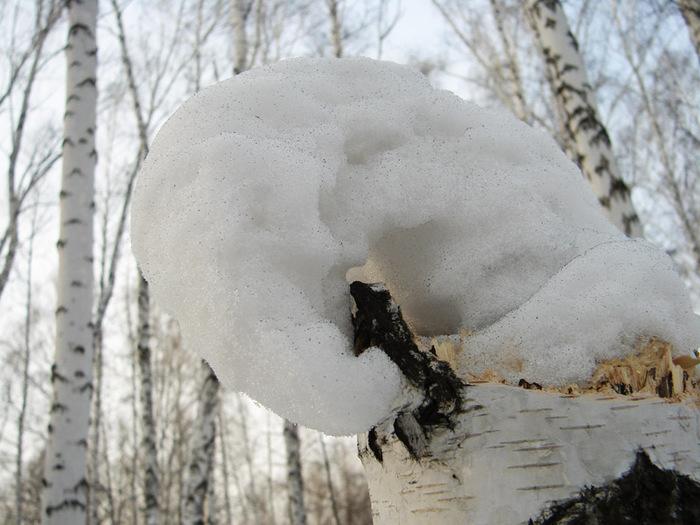 Модная снежная шапка/1415502_snejnaya_forma (700x525, 126Kb)