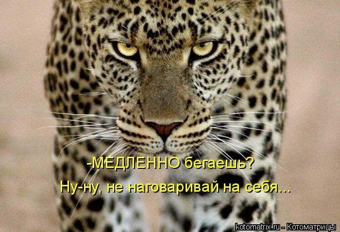 1391956606_cm_20140207_03612_010 (700x478, 207Kb)