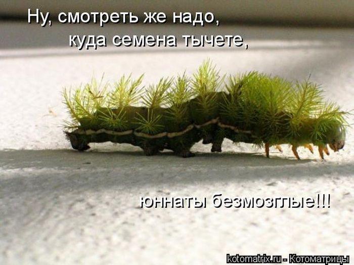 1391956618_cm_20140207_03612_037 (700x524, 177Kb)