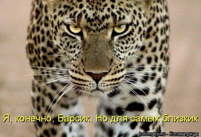1391956648_cm_20140207_03612_035 (700x478, 205Kb)