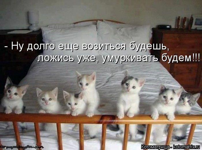 1391956699_cm_20140207_03612_013 (700x522, 174Kb)