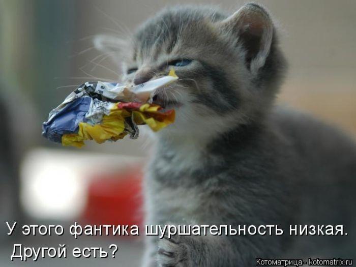 1391956712_cm_20140207_03612_034 (700x525, 122Kb)