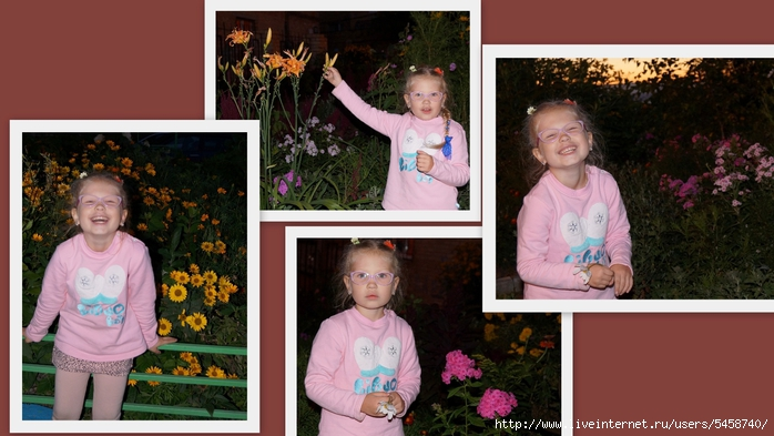 Какие цветы!!! (700x393, 218Kb)