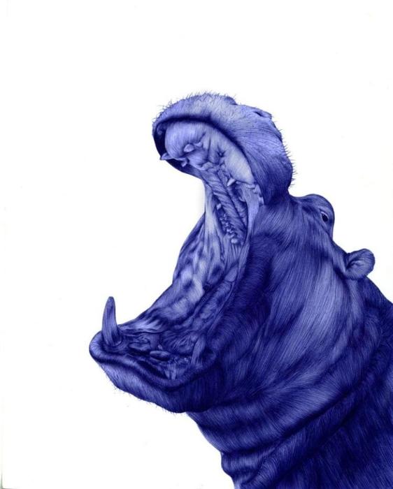 рисунки шариковой ручкой Художница Сара Эстридж 4 (562x700, 136Kb)