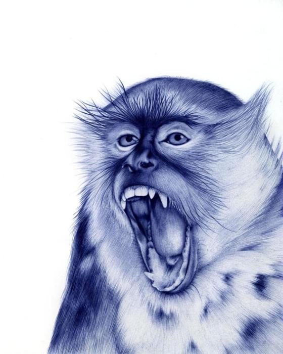 рисунки шариковой ручкой Художница Сара Эстридж 6 (560x700, 194Kb)