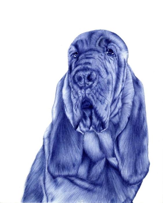 рисунки шариковой ручкой Художница Сара Эстридж 8 (562x700, 172Kb)