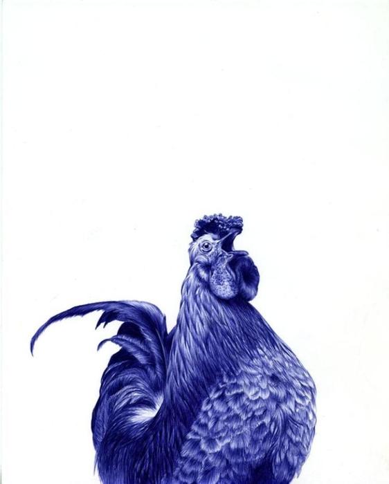 рисунки шариковой ручкой Художница Сара Эстридж 12 (562x700, 108Kb)