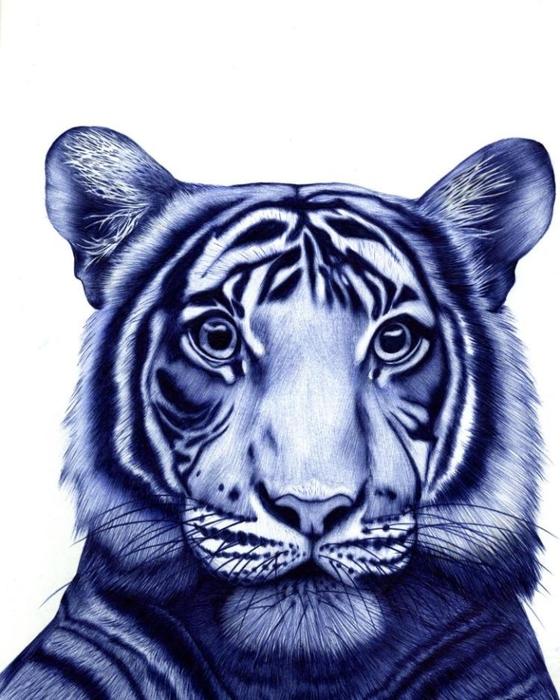 рисунки шариковой ручкой Художница Сара Эстридж (560x700, 253Kb)