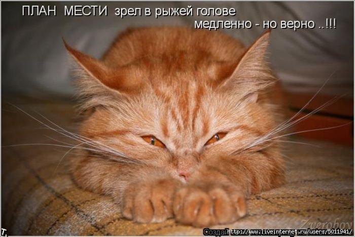 101772488_5177462_kotomatrix_18 (700x468, 141Kb)