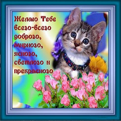 103799225_large_a2971c053689 (490x490, 177Kb)