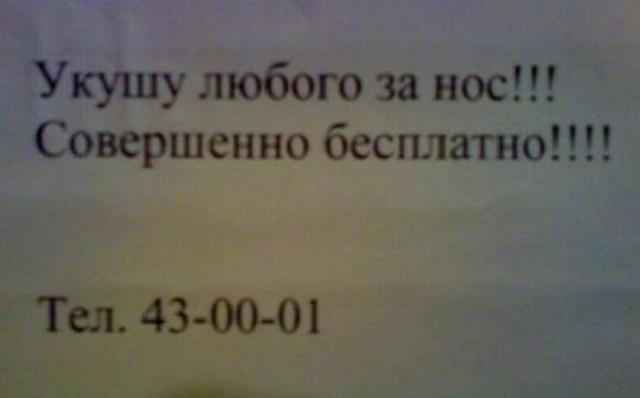 4598af8b98310a096a2384e4a11b502a (640x398, 28Kb)