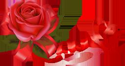 109554687_98647609_AH (255x135, 48Kb)