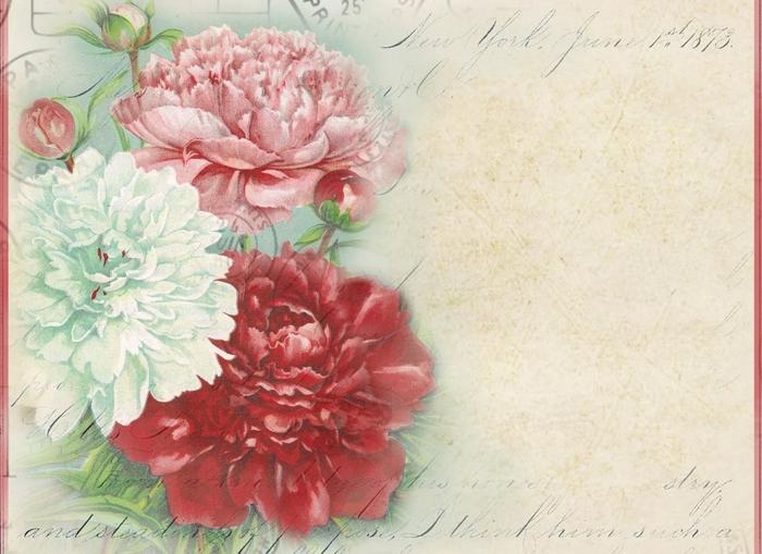 Notecard ~ Peonies ~ lilac-n-lavender (700x509, 265Kb)