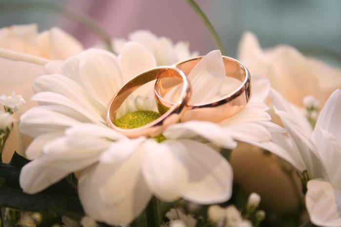 Удачный брак по сезону года/4059776_103773375_425069_56 (699x466, 86Kb)