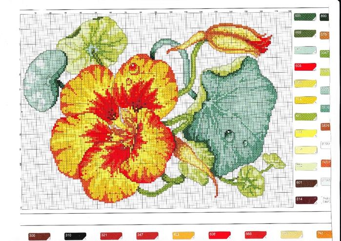 Цветочек (2) (700x494, 296Kb)