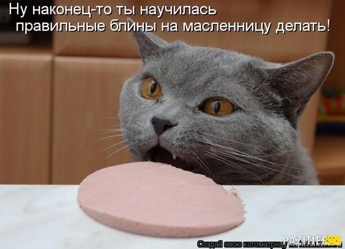 1330896949_kotomatrix_31 (700x506, 146Kb)